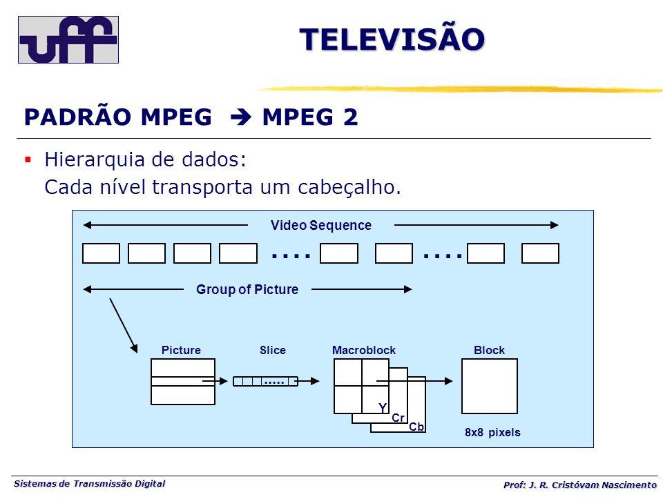 Sistemas de Transmissão Digital Prof: J. R. Cristóvam Nascimento.... Video Sequence Group of Picture..... Y Cr Cb PictureSliceMacroblockBlock 8x8 pixe