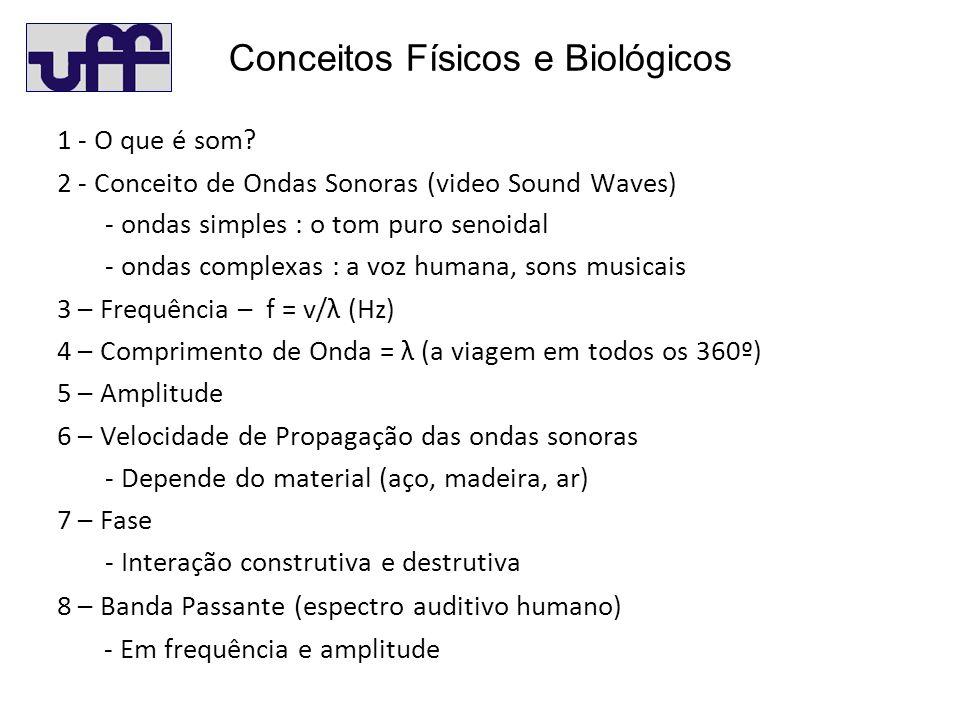 Conceitos Físicos e Biológicos 1 - O que é som.