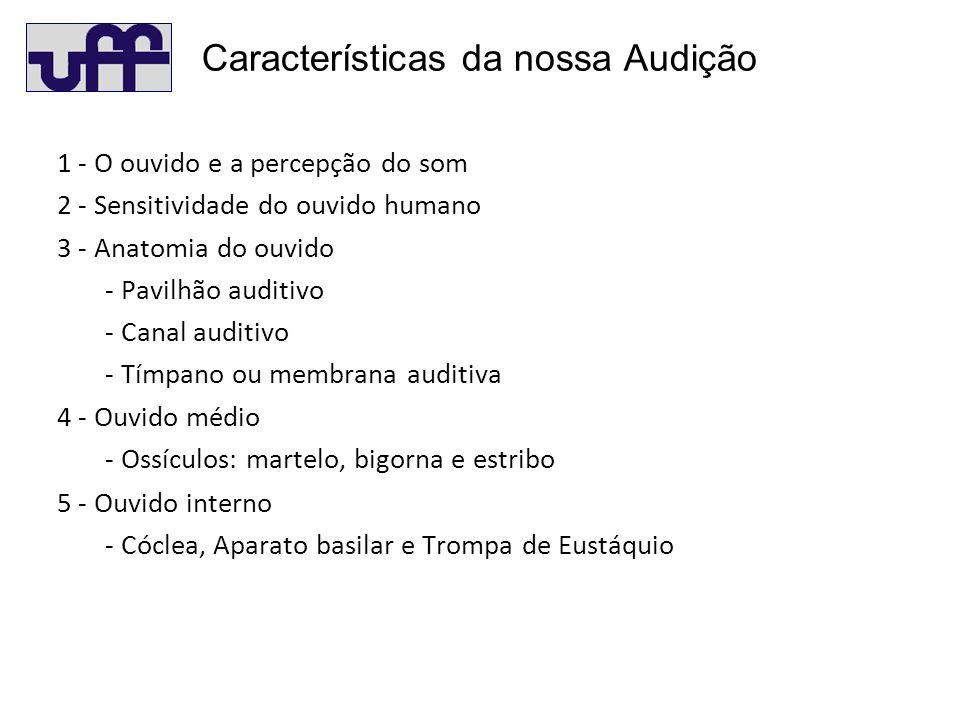 1 - O ouvido e a percepção do som 2 - Sensitividade do ouvido humano 3 - Anatomia do ouvido - Pavilhão auditivo - Canal auditivo - Tímpano ou membrana auditiva 4 - Ouvido médio - Ossículos: martelo, bigorna e estribo 5 - Ouvido interno - Cóclea, Aparato basilar e Trompa de Eustáquio