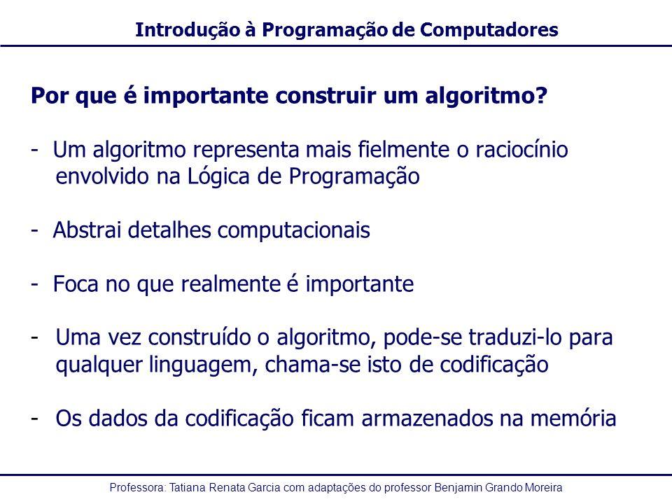 Professora: Tatiana Renata Garcia com adaptações do professor Benjamin Grando Moreira Introdução à Programação de Computadores Por que é importante co
