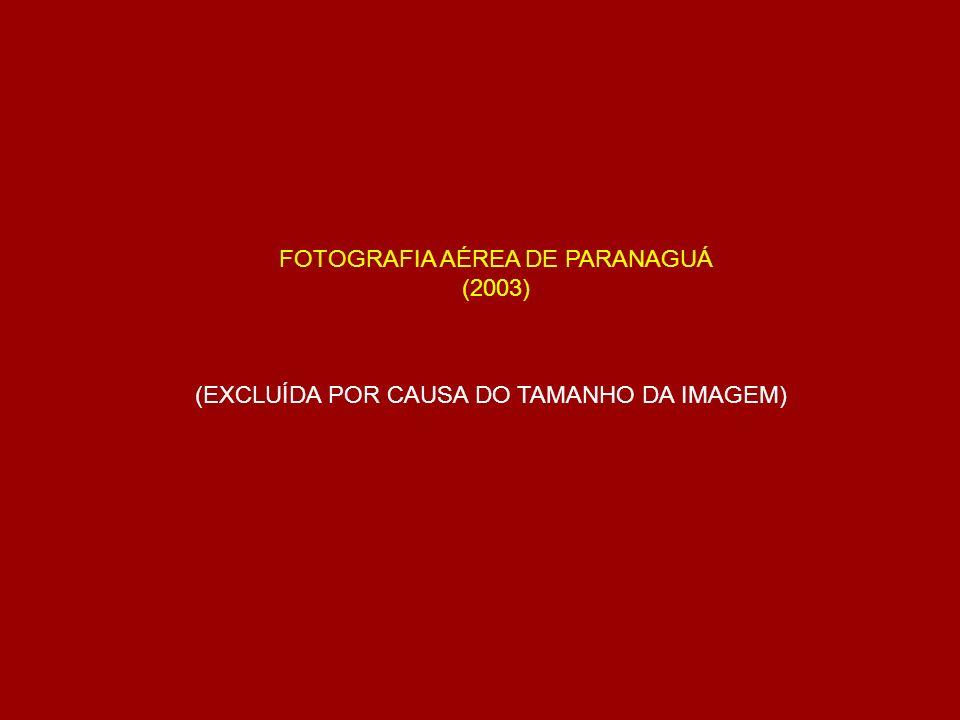 FOTOGRAFIA AÉREA DE PARANAGUÁ (2003) (EXCLUÍDA POR CAUSA DO TAMANHO DA IMAGEM)