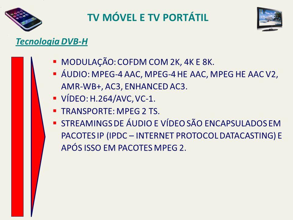 MODULAÇÃO: COFDM COM 2K, 4K E 8K. ÁUDIO: MPEG-4 AAC, MPEG-4 HE AAC, MPEG HE AAC V2, AMR-WB+, AC3, ENHANCED AC3. VÍDEO: H.264/AVC, VC-1. TRANSPORTE: MP