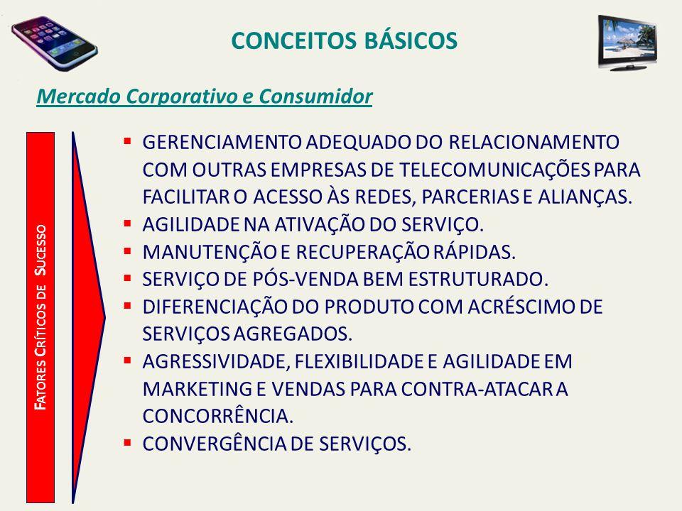 CONCEITOS BÁSICOS F ATORES C RÍTICOS DE S UCESSO Mercado Corporativo e Consumidor GERENCIAMENTO ADEQUADO DO RELACIONAMENTO COM OUTRAS EMPRESAS DE TELE