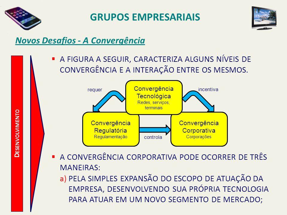D ESENVOLVIMENTO Novos Desafios - A Convergência b)ATRAVÉS DE PARCERIAS (JOINT VENTURES), EM QUE DUAS OU MAIS EMPRESAS SE UNEM PARA OFERECER CONJUNTAMENTE UM PACOTE DE PRODUTOS OU SERVIÇOS, OU UNIFICAM SUAS LINHAS DE PRODUTO EM UMA SÓ; c)PELA FUSÃO OU AQUISIÇÃO DE OUTRAS EMPRESAS, ABSORVENDO ASSIM SEU CAPITAL INTELECTUAL, ABRANGENDO SUA MARCA, TECNOLOGIA, LINHAS DE PRODUTOS E POR CONSEQUÊNCIA, SUA PARTICIPAÇÃO NO MERCADO.
