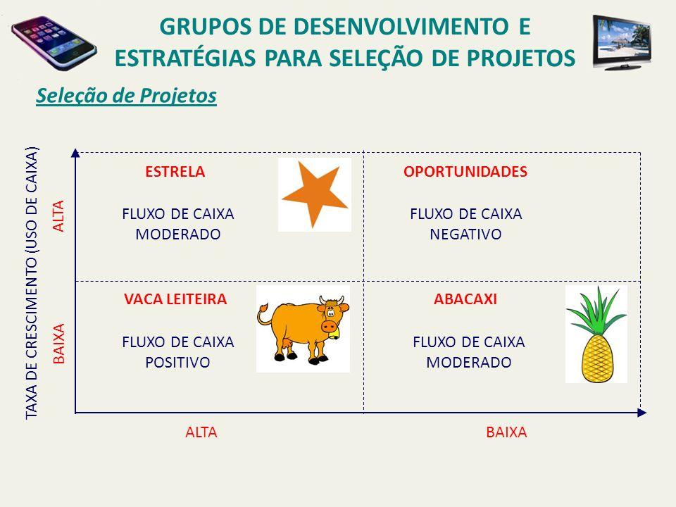 Seleção de Projetos GRUPOS DE DESENVOLVIMENTO E ESTRATÉGIAS PARA SELEÇÃO DE PROJETOS ALTABAIXA PARTICIPAÇÃO DE MERCADO (GERAÇÃO DE CAIXA) ALTA BAIXA TAXA DE CRESCIMENTO (USO DE CAIXA) ESTRELA VACA LEITEIRA ABACAXI OPORTUNIDADES $ X