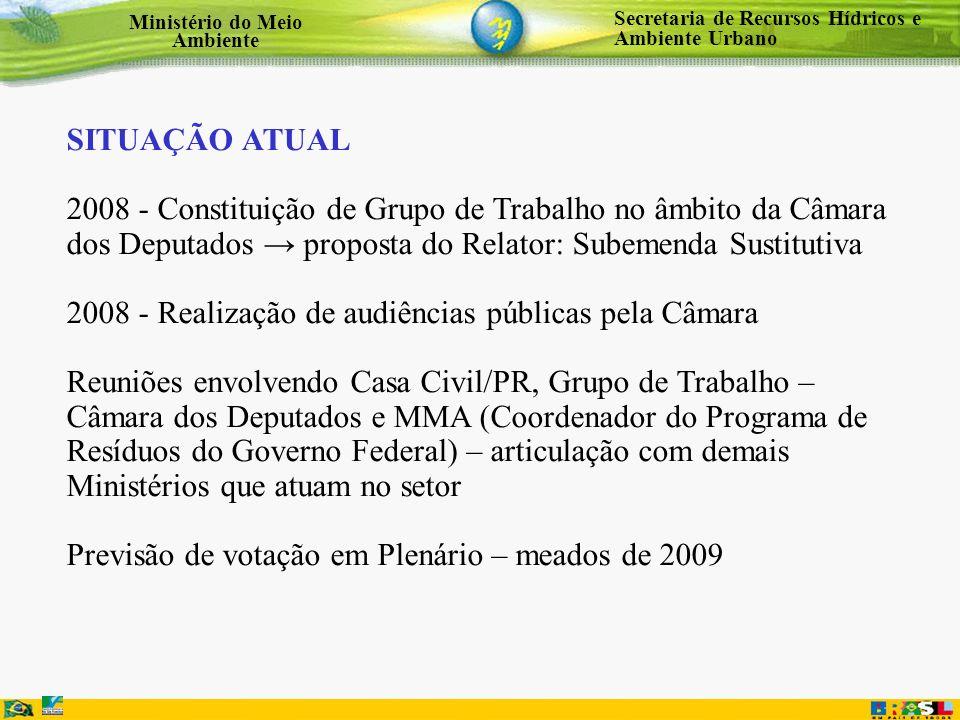 Secretaria de Recursos Hídricos e Ambiente Urbano Ministério do Meio Ambiente SITUAÇÃO ATUAL 2008 - Constituição de Grupo de Trabalho no âmbito da Câm
