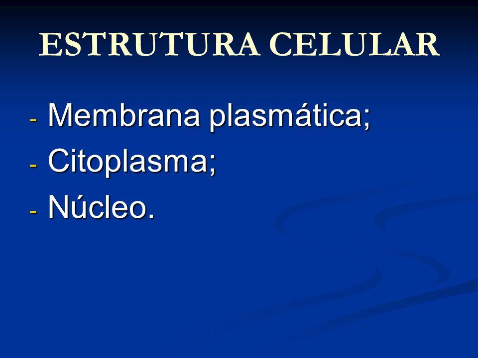 ESTRUTURA CELULAR - Membrana plasmática; - Citoplasma; - Núcleo.