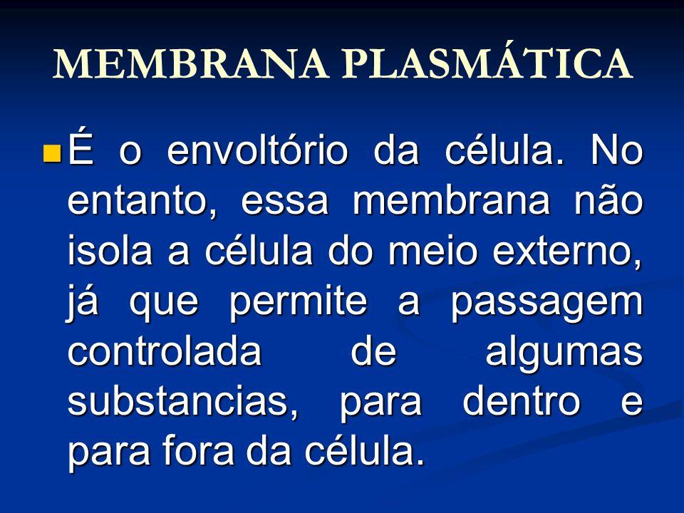 MEMBRANA PLASMÁTICA É o envoltório da célula. No entanto, essa membrana não isola a célula do meio externo, já que permite a passagem controlada de al