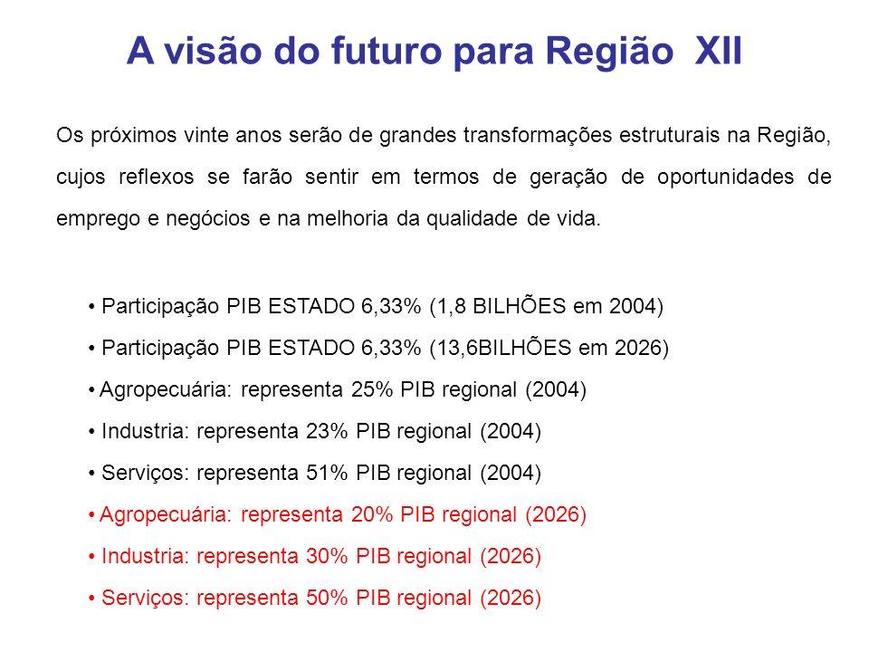 Participação PIB ESTADO 6,33% (1,8 BILHÕES em 2004) Participação PIB ESTADO 6,33% (13,6BILHÕES em 2026) Agropecuária: representa 25% PIB regional (2004) Industria: representa 23% PIB regional (2004) Serviços: representa 51% PIB regional (2004) Agropecuária: representa 20% PIB regional (2026) Industria: representa 30% PIB regional (2026) Serviços: representa 50% PIB regional (2026) A visão do futuro para Região XII Os próximos vinte anos serão de grandes transformações estruturais na Região, cujos reflexos se farão sentir em termos de geração de oportunidades de emprego e negócios e na melhoria da qualidade de vida.