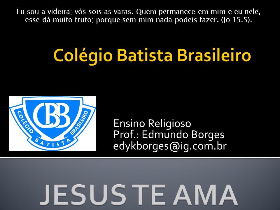 Ensino Religioso Prof.: Edmundo Borges edykborges@ig.com.br Eu sou a videira; vós sois as varas. Quem permanece em mim e eu nele, esse dá muito fruto;