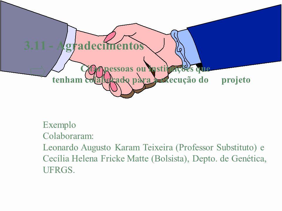3.11 - Agradecimentos Exemplo Colaboraram: Leonardo Augusto Karam Teixeira (Professor Substituto) e Cecília Helena Fricke Matte (Bolsista), Depto. de