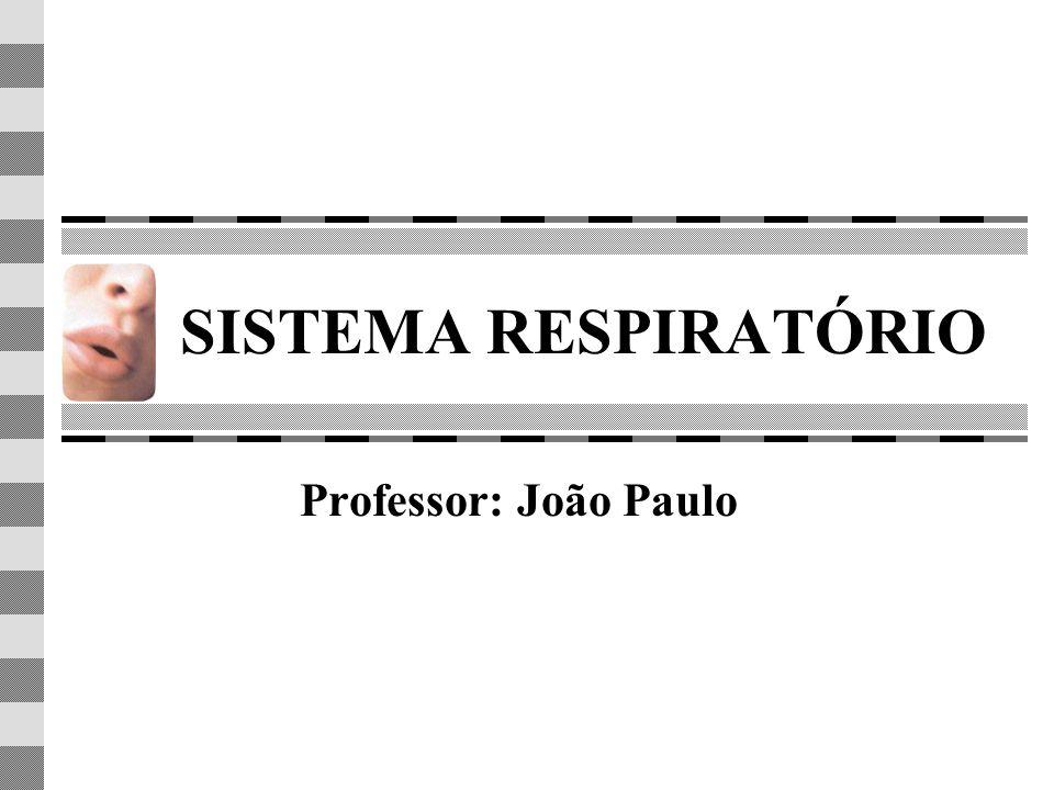 SISTEMA RESPIRATÓRIO Professor: João Paulo