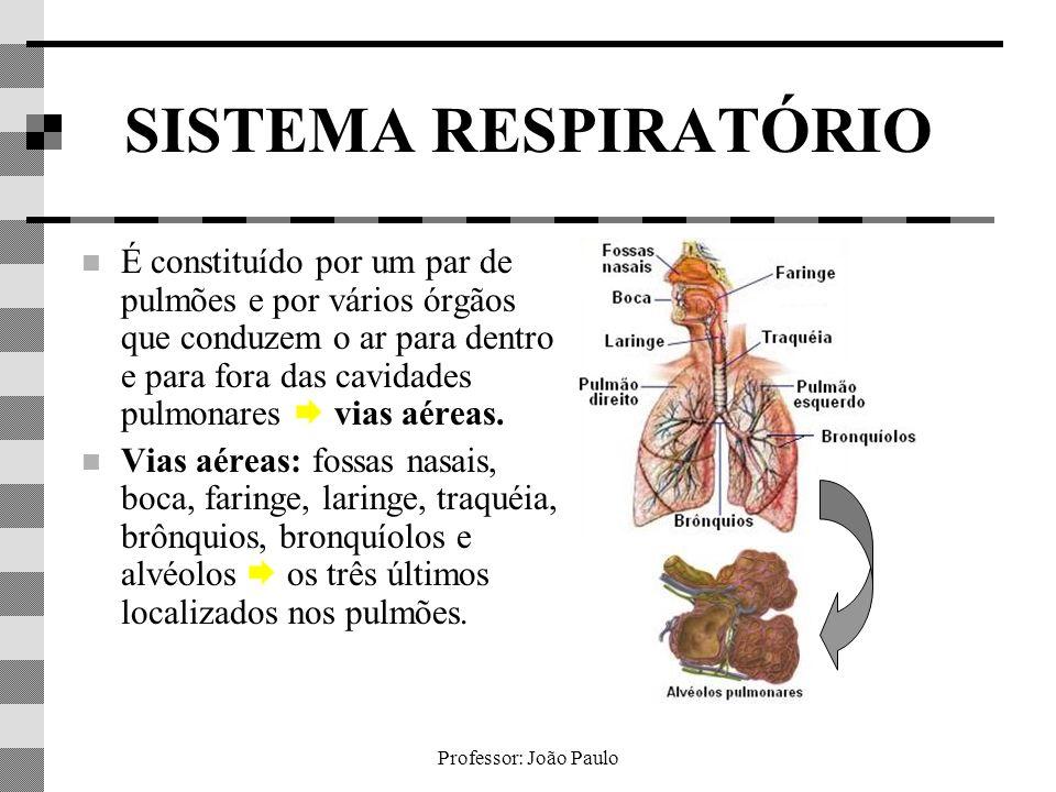 Professor: João Paulo FISIOLOGIA DA RESPIRAÇÃO - CONTROLE DA RESPIRAÇÃO - Em condições normais, CR produz, a cada 5 segundos, um impulso nervoso que estimula a contração da musculatura torácica e do diafragma, fazendo-nos respirar.