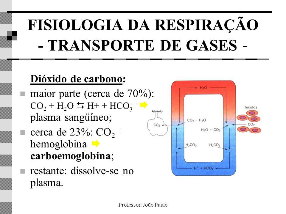Professor: João Paulo FISIOLOGIA DA RESPIRAÇÃO - TRANSPORTE DE GASES - Dióxido de carbono: maior parte (cerca de 70%): CO 2 + H 2 O H+ + HCO 3 plasma