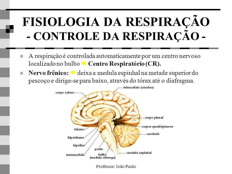 Professor: João Paulo FISIOLOGIA DA RESPIRAÇÃO - CONTROLE DA RESPIRAÇÃO - A respiração é controlada automaticamente por um centro nervoso localizado n