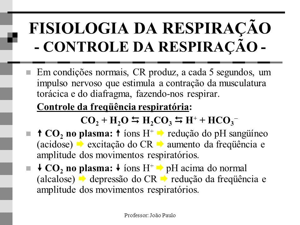Professor: João Paulo FISIOLOGIA DA RESPIRAÇÃO - CONTROLE DA RESPIRAÇÃO - Em condições normais, CR produz, a cada 5 segundos, um impulso nervoso que e