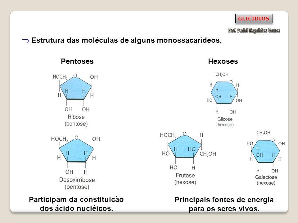 DISSACARÍDEOS (di-, dois, sacarídeo, açúcar) São constituídos pela união de dois monossacarídeos.