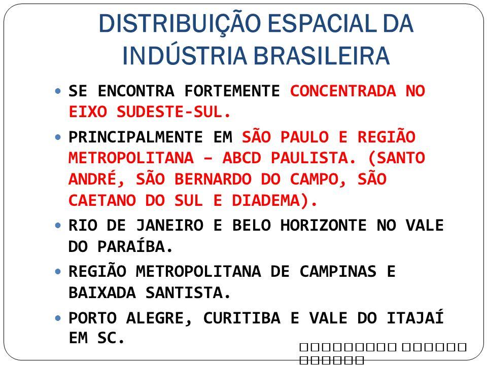 DISTRIBUIÇÃO ESPACIAL DA INDÚSTRIA BRASILEIRA SE ENCONTRA FORTEMENTE CONCENTRADA NO EIXO SUDESTE-SUL. PRINCIPALMENTE EM SÃO PAULO E REGIÃO METROPOLITA