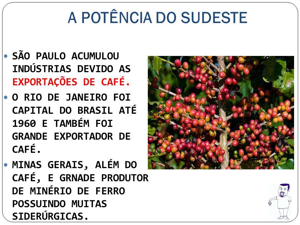 A POTÊNCIA DO SUDESTE SÃO PAULO ACUMULOU INDÚSTRIAS DEVIDO AS EXPORTAÇÕES DE CAFÉ. O RIO DE JANEIRO FOI CAPITAL DO BRASIL ATÉ 1960 E TAMBÉM FOI GRANDE
