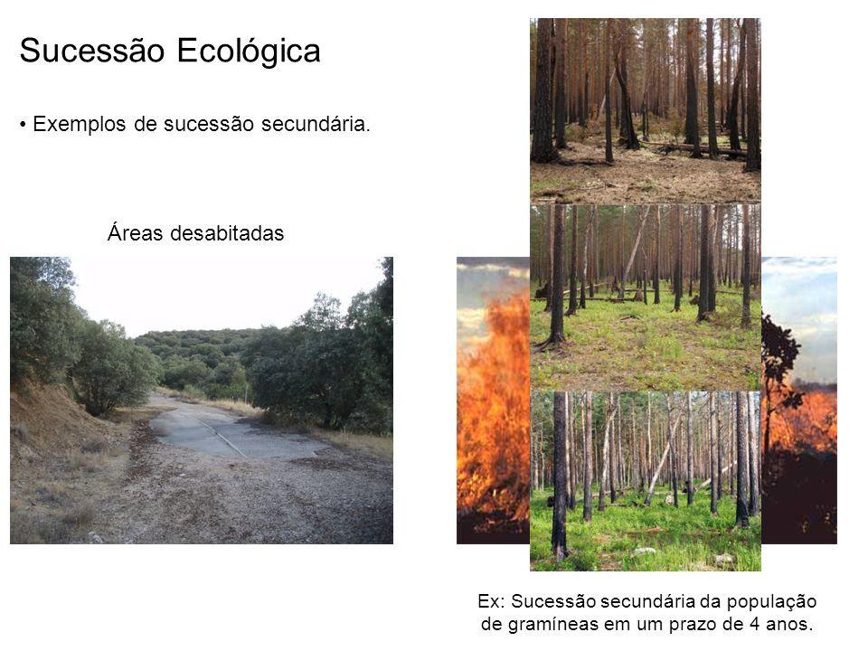 Sucessão Ecológica Exemplos de sucessão secundária. Áreas desabitadas Áreas queimadas Ex: Sucessão secundária da população de gramíneas em um prazo de