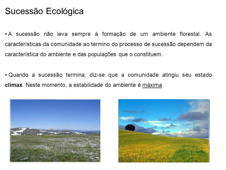 Sucessão Ecológica A sucessão não leva sempre à formação de um ambiente florestal.