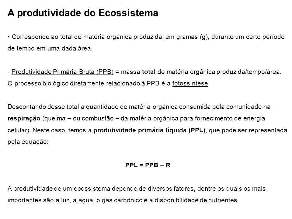 A produtividade do Ecossistema Corresponde ao total de matéria orgânica produzida, em gramas (g), durante um certo período de tempo em uma dada área.
