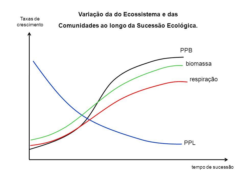 PPB biomassa respiração PPL Taxas de crescimento tempo de sucessão Variação da do Ecossistema e das Comunidades ao longo da Sucessão Ecológica.