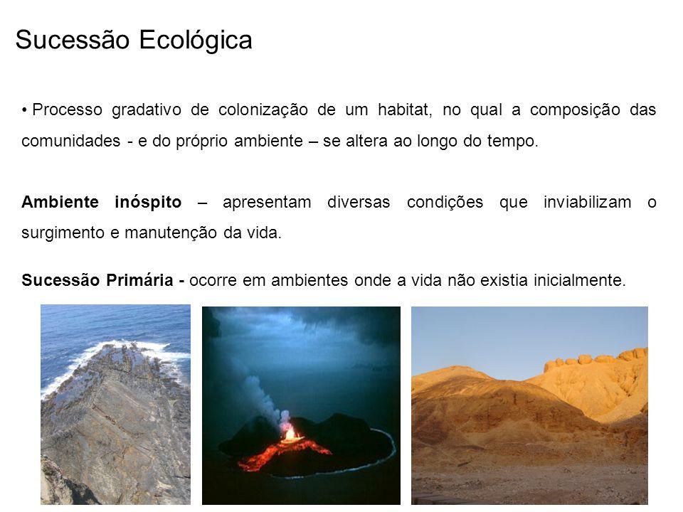 Sucessão Ecológica Processo gradativo de colonização de um habitat, no qual a composição das comunidades - e do próprio ambiente – se altera ao longo