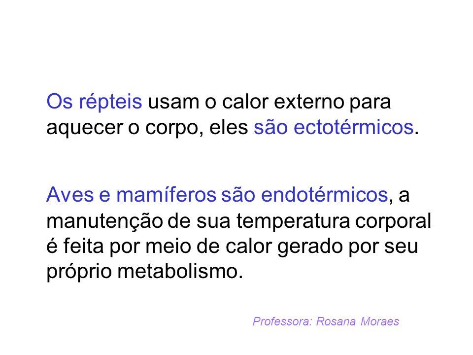 Os répteis usam o calor externo para aquecer o corpo, eles são ectotérmicos. Aves e mamíferos são endotérmicos, a manutenção de sua temperatura corpor