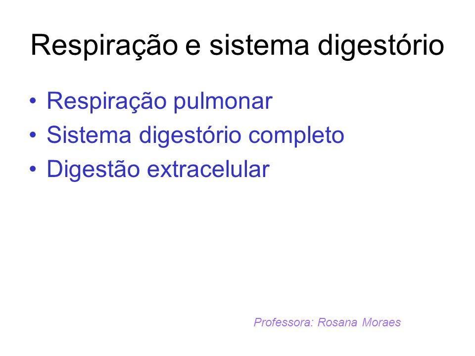 Respiração e sistema digestório Respiração pulmonar Sistema digestório completo Digestão extracelular Professora: Rosana Moraes