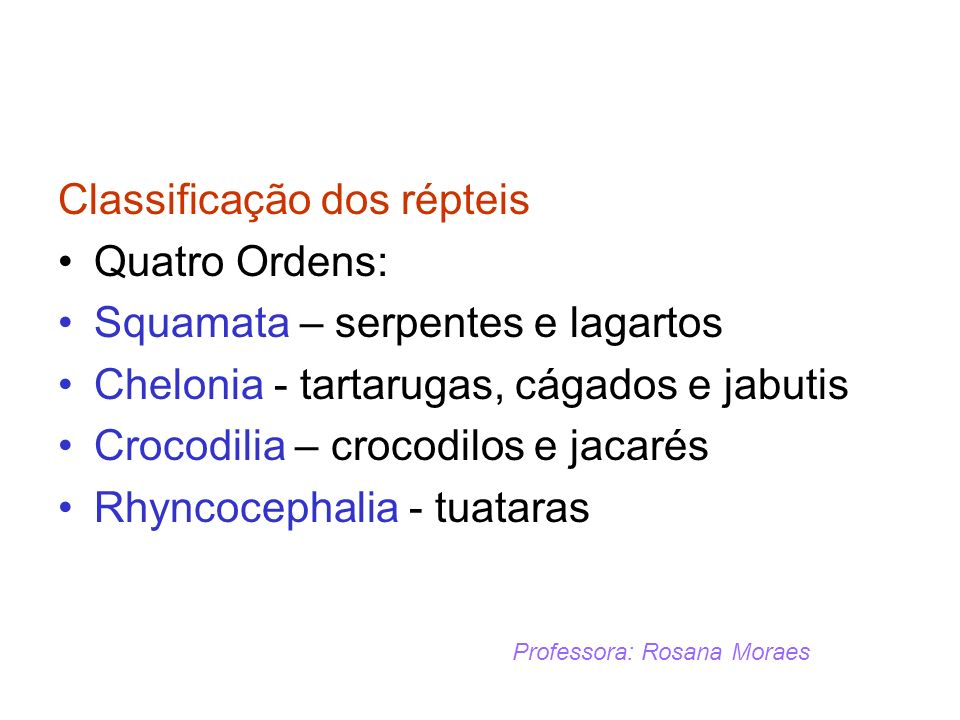 Classificação dos répteis Quatro Ordens: Squamata – serpentes e lagartos Chelonia - tartarugas, cágados e jabutis Crocodilia – crocodilos e jacarés Rh
