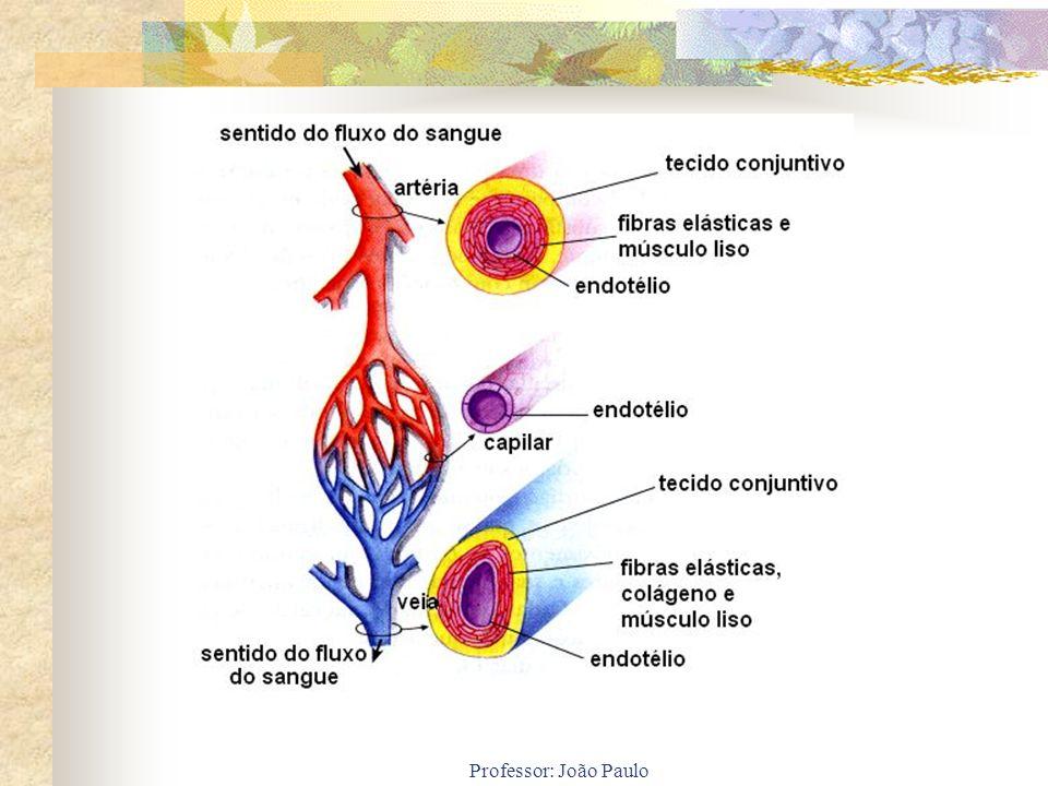 Professor: João Paulo
