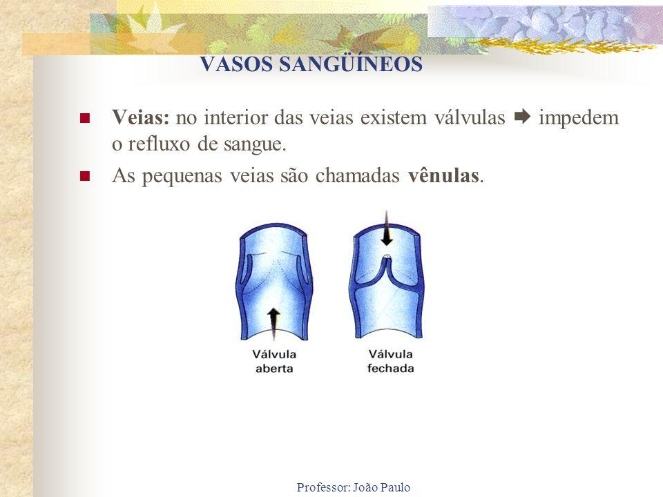 VASOS SANGÜÍNEOS Veias: no interior das veias existem válvulas impedem o refluxo de sangue. As pequenas veias são chamadas vênulas.