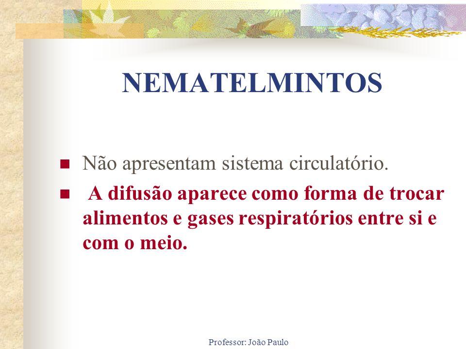 Professor: João Paulo NEMATELMINTOS Não apresentam sistema circulatório. A difusão aparece como forma de trocar alimentos e gases respiratórios entre