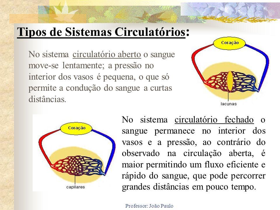 Professor: João Paulo Nos animais de circulação fechada, podemos identificar, de acordo com a complexidade de seu corpo, até cinco categorias de vasos sangüíneos: artérias, arteríolas, capilares, vênulas e veias.