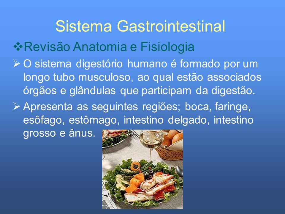 Sistema Gastrointestinal Revisão Anatomia e Fisiologia Intestino Grosso Mede cerca de 1,5 m de comprimento e divide-se em ceco, cólon ascendente, cólon transverso, cólon descendente, cólon sigmóide e reto.