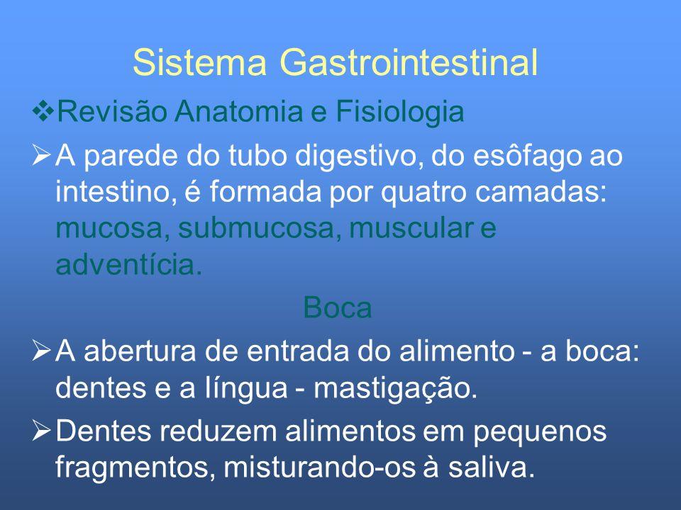 Sistema Gastrointestinal Revisão Anatomia e Fisiologia Fígado O tecido hepático é constituído por lobos, compostos por colunas de hepatócitos, rodeadas por canais diminutos (canalículos), pelos quais passa a bile, secretada pelos hepatócitos.