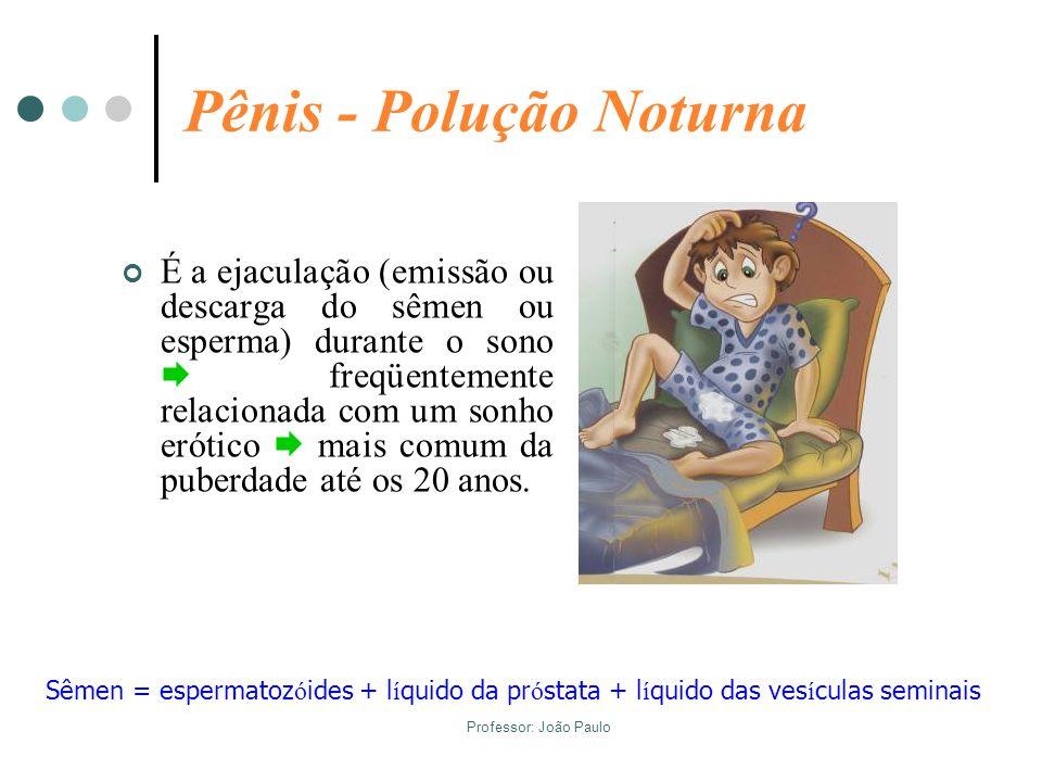 Professor: João Paulo Pênis - Polução Noturna É a ejaculação (emissão ou descarga do sêmen ou esperma) durante o sono freqüentemente relacionada com u