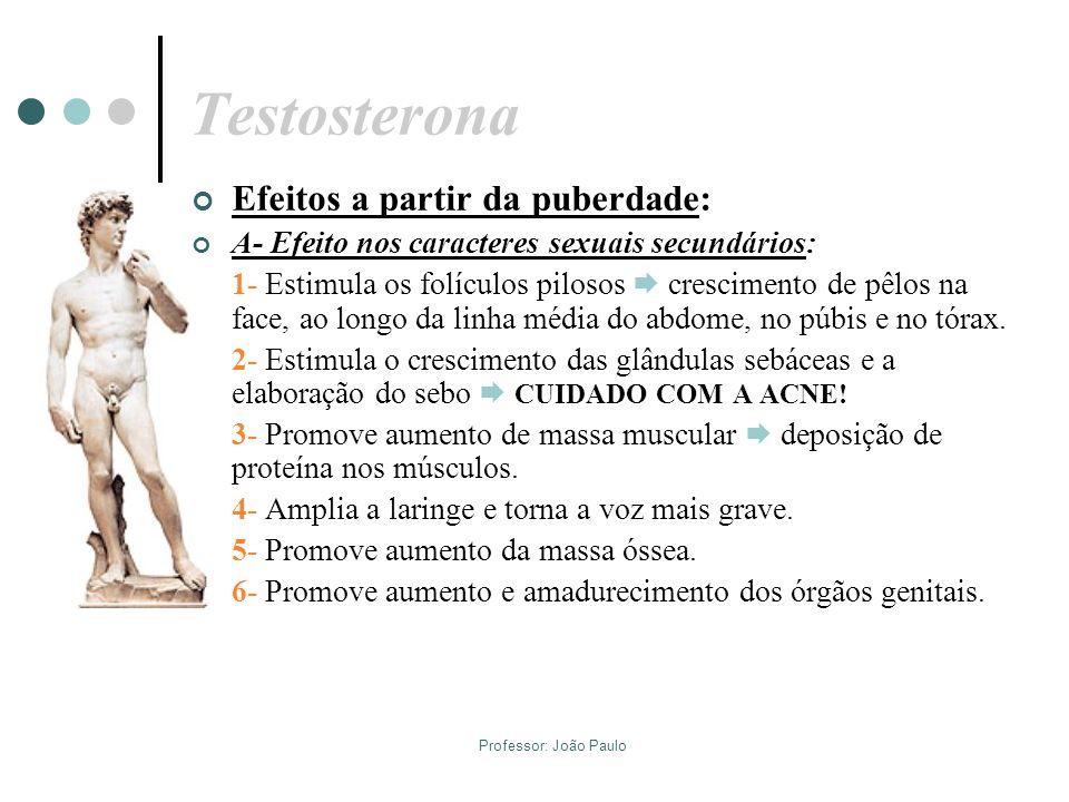 Professor: João Paulo Testosterona Efeitos a partir da puberdade: A- Efeito nos caracteres sexuais secundários: 1- Estimula os folículos pilosos cresc