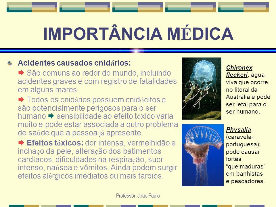 Professor: João Paulo IMPORTÂNCIA M É DICA Acidentes causados cnid á rios: São comuns ao redor do mundo, incluindo acidentes graves e com registro de