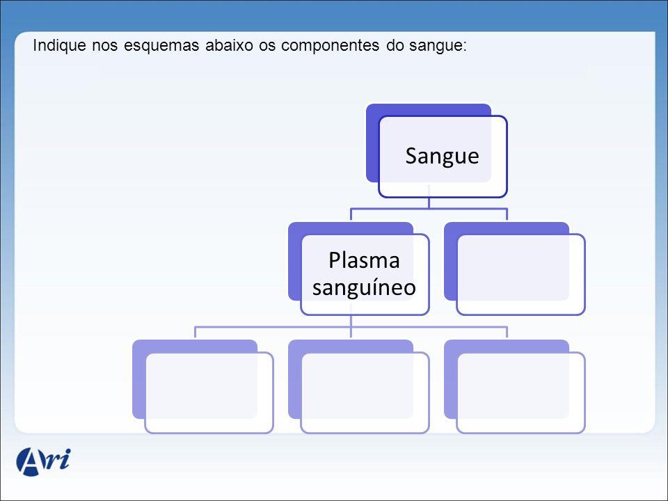 Indique nos esquemas abaixo os componentes do sangue: Sangue Plasma sanguíneo