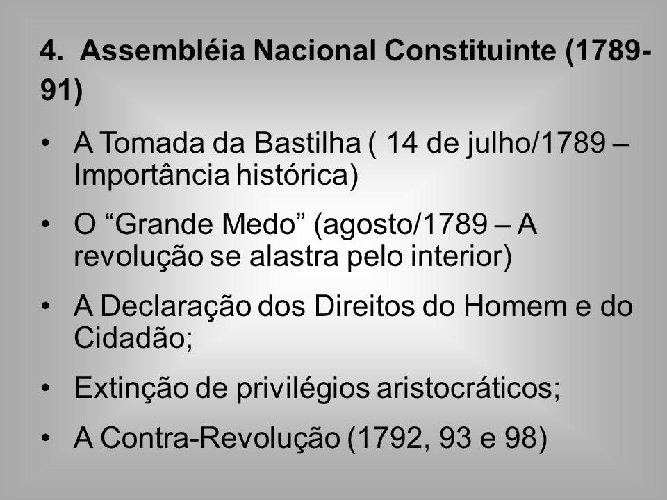 4. Assembléia Nacional Constituinte (1789- 91) A Tomada da Bastilha ( 14 de julho/1789 – Importância histórica) O Grande Medo (agosto/1789 – A revoluç