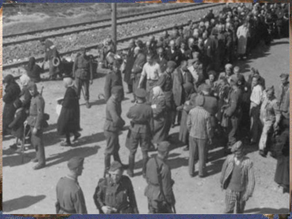 Holocausto Holocausto