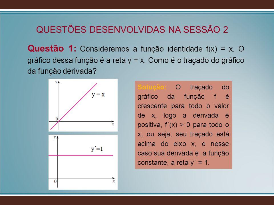 QUESTÕES DESENVOLVIDAS NA SESSÃO 2 Questão 1: Consideremos a função identidade f(x) = x. O gráfico dessa função é a reta y = x. Como é o traçado do gr