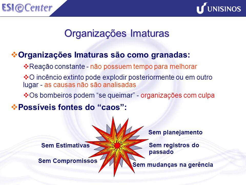 Organizações Imaturas Organizações Imaturas são como granadas: Reação constante - não possuem tempo para melhorar O incêncio extinto pode explodir pos