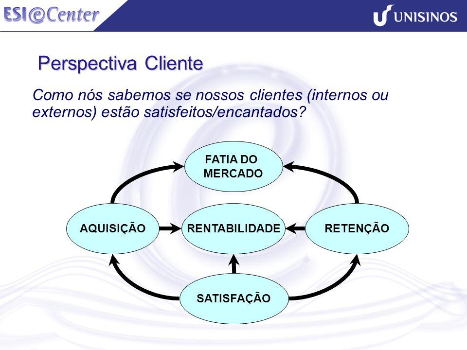 Perspectiva Cliente FATIA DO MERCADO SATISFAÇÃO AQUISIÇÃORENTABILIDADERETENÇÃO Como nós sabemos se nossos clientes (internos ou externos) estão satisf