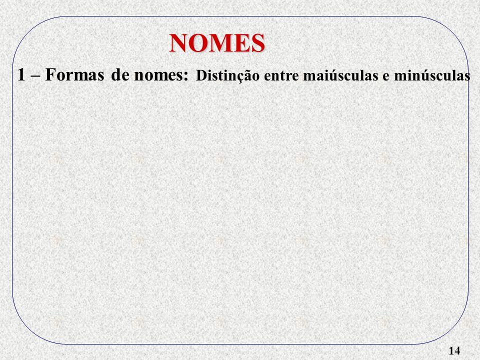 14 NOMES 1 – Formas de nomes: Distinção entre maiúsculas e minúsculas