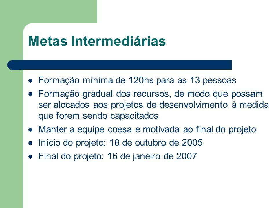 Metas Intermediárias Formação mínima de 120hs para as 13 pessoas Formação gradual dos recursos, de modo que possam ser alocados aos projetos de desenvolvimento à medida que forem sendo capacitados Manter a equipe coesa e motivada ao final do projeto Início do projeto: 18 de outubro de 2005 Final do projeto: 16 de janeiro de 2007