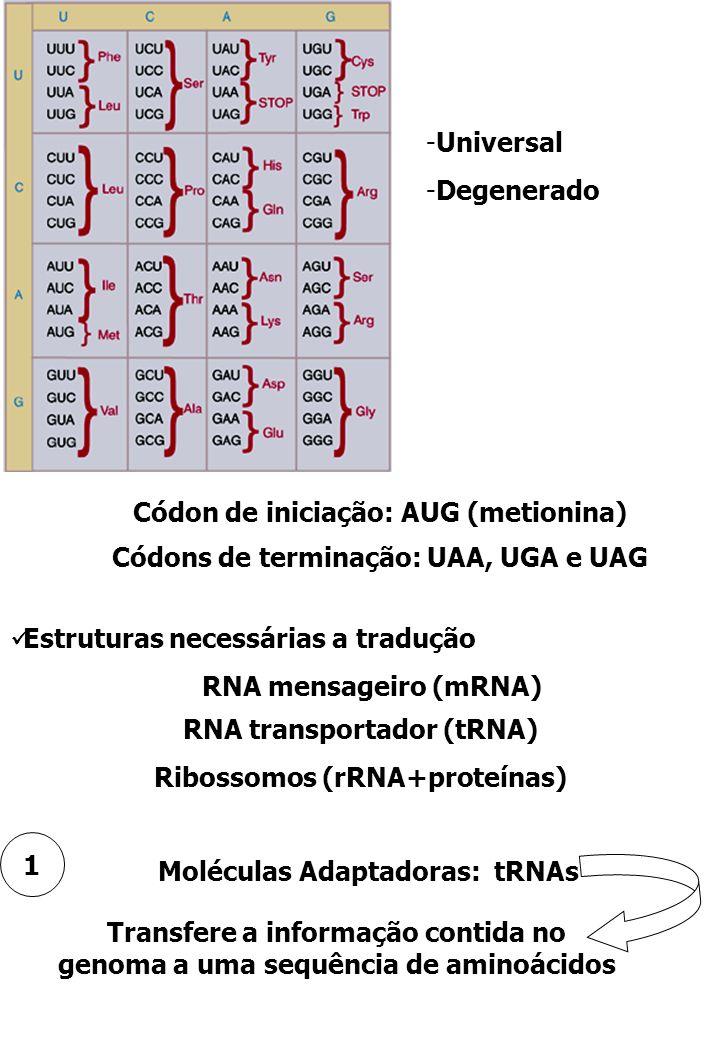 -Universal -Degenerado Códon de iniciação: AUG (metionina) Códons de terminação: UAA, UGA e UAG Estruturas necessárias a tradução RNA mensageiro (mRNA