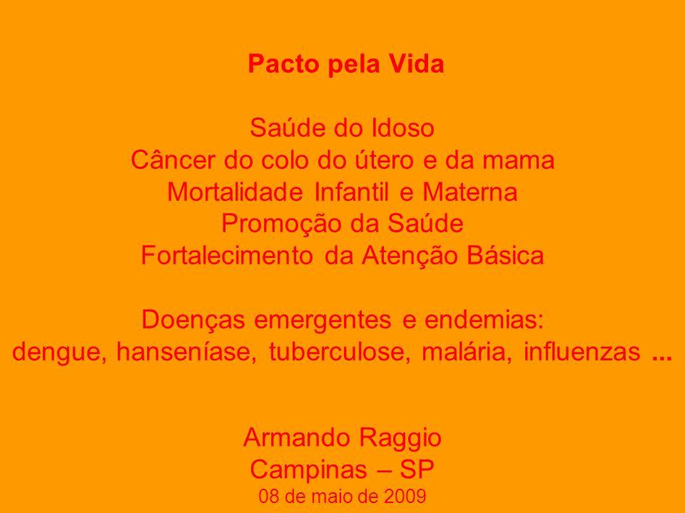 Pacto pela Vida Saúde do Idoso Câncer do colo do útero e da mama Mortalidade Infantil e Materna Promoção da Saúde Fortalecimento da Atenção Básica Doenças emergentes e endemias: dengue, hanseníase, tuberculose, malária, influenzas...